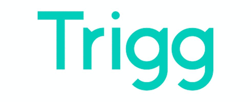 Logo Trigg