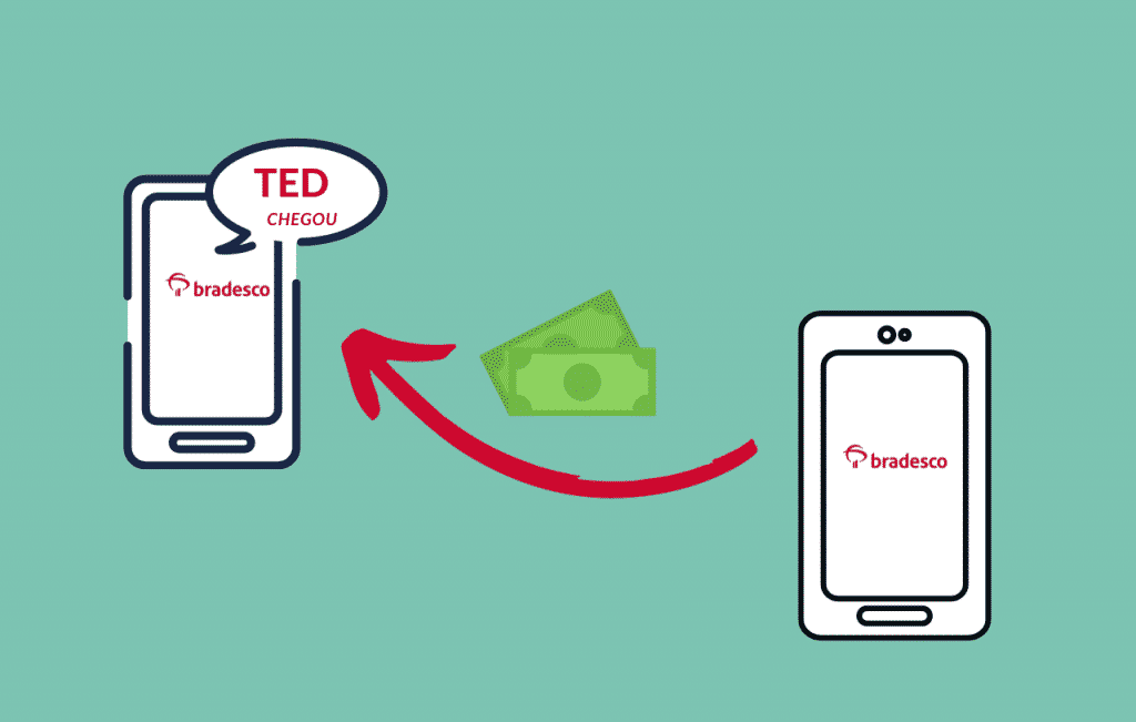 Você sabe quanto tempo demora para cair uma Transferência bancária Eletrônica Disponível TED?